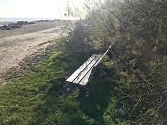 Goring-by-sea (sally.mcclarnon) Tags: seat empty winter sunlight beach bench