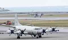 JASDF 603rd SQ E-2C (mimiji93) Tags: jasdf nahaairbase e2c hawkeye 603rdsquadron 航空自衛隊 那覇基地 ホークアイ 603飛行隊 航空警戒隊