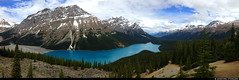 20180615_i1k Panorama of the lovely Peyto Lake in Banff National Park, Alberta, Canada (ratexla (protected by Pixsy)) Tags: ratexlasalaskatrip2018 ratexlasgreentortoisetrip2018 travel vacation holiday travelling journey traveling epic greentortoise iphone 2018 iphone5 alaskaexpedition photophotospicturepicturesimageimagesfotofotonbildbilder 15jun2018 summer cool earth roadtrip wanderlust backpacking alberta northamerica ontheroad semester sommar banffnationalpark tellus banffnp nordamerika resaresor panorama mountain canada mountains nature beautiful berg landscape scenery pano scenic panoramas kanada landskap peytolake lake water lakes vatten sjö sjöar ratexla photosbyjosefinestenudd almostanything unlimitedphotos favorite wow canadianrockies rockymountains thecanadianrockies therockymountains therockies 1000views