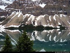 20180615_02 Shiny lake (Bow Lake?) & snowy mountains, Banff National Park, Alberta, Canada (ratexla (protected by Pixsy)) Tags: ratexlasalaskatrip2018 ratexlasgreentortoisetrip2018 greentortoise alaskaexpedition 15jun2018 2018 canonpowershotsx50hs travel travelling traveling journey epic photophotospicturepicturesimageimagesfotofotonbildbilder vacation holiday semester backpacking wanderlust resaresor cool summer sommar northamerica nordamerika earth tellus ontheroad roadtrip banffnationalpark banffnp alberta canada kanada bowlake landscape landskap scenery scenic mountain mountains berg beautiful nature lake lakes sjö sjöar water vatten favorite canadianrockies rockymountains thecanadianrockies therockymountains therockies