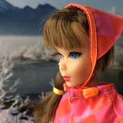 Winter day (Foxy Belle) Tags: mod barbie snow hats brunette vintage doll scene calendar