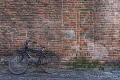 Roggestraat, Deventer (Ivan van Nek) Tags: wall muur fiets bicycle redbricks rodebakstenen history traces nikon d7200 sigma1770 nederland roggestraat deventer overijssel thenetherlands paysbas dieniederlande ancient oud vogue elite