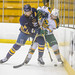 2020_01_17GoldenBearsHockey (15)