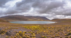 Miniques Lake / Озеро Миньикес (Vladimir Zhdanov) Tags: travel chile atacama andes altiplano mountains mountainside nature landscape lake lagominiques water grass stone sky clouds