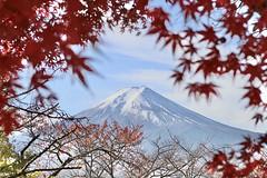 IMG_3513 2 (Ryansworldtour) Tags: fuji japan m50 canon