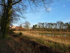 On a sunny walk in the neighbourhood (joeke pieters) Tags: 1520816 panasonicdmcfz150 woold winterswijk achterhoek gelderland nederland netherlands holland landschap landscape landschaft paysage