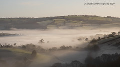Exe valley views (Daryl 1988) Tags: mistymorning mist devon beautiful viewpoint view valley vista winter 2020 january weekend exevalley lush landscape land landscapephotography hills nikon nikonphotography d500 light photography photo nofilter image exposure nikondx camera capture vibrant