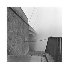 No entry, no exit (nenahuak) Tags: river bridge mist autocord fomapan rodinal