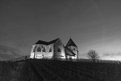 Church in the vineyards 4 (fred-4-ever) Tags: lumiere sunset light monochrome noiretblanc blackandwhite bw france ciel sky champagne croix cross church eglise fujifilm xpro2