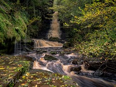Mill Gill Force (iamfisheye) Tags: yorkshiredales october2019