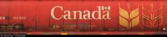 20180615_12 Red train car with Canada & grain logos in Jasper, Alberta, Canada (ratexla (protected by Pixsy)) Tags: ratexlasalaskatrip2018 ratexlasgreentortoisetrip2018 greentortoise alaskaexpedition 15jun2018 2018 canonpowershotsx50hs travel travelling traveling journey epic photophotospicturepicturesimageimagesfotofotonbildbilder vacation holiday semester backpacking wanderlust resaresor cool summer sommar northamerica nordamerika earth tellus ontheroad roadtrip jaspernationalpark banffnp alberta canada kanada jasper train trains tåg railway railroad järnväg railroadearth red grain gsgsgs