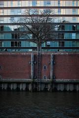 DSCF2467 (GholaGhola) Tags: hamburg streetphotography buildings harbour fleet
