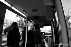 Mini Bus Gratuit (Bruno TASSAN) Tags: mini bus minibus transports collectifs autobus