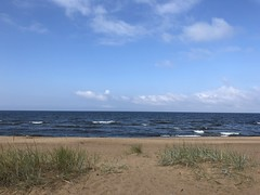 Saulkrasti (ilamya) Tags: latvia saulkrasti beach sea balticsea grass gulfofriga