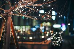 2112/1743:z (june1777) Tags: snap street alley seoul night light bokeh sony a7ii konica hexanon ar 50mm f17 1250 clear shinsadong vin2