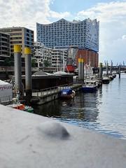 Traditionsschiffhafen und Elbphilharmonie (wufordvz46) Tags: hamburg hafen hafencity elbphilharmonie