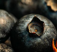 blueberry 2 (Abhijit.sen) Tags: cyanococcus fruit bluberries berries tiny lighting macro artificiallight nature