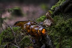 Empty bottle. (lortopalt) Tags: tomflaska tom flaska empty bottle party over lortopalt stefan nikon d850