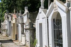 Occitanie_0251 (Joanbrebo) Tags: occitanie rosselló fr france cotlliure canoneos70d eosd autofocus cementerio cementiris cemetery cemeteries tombs tombes tumbas tumbes