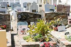 Occitanie_0250 (Joanbrebo) Tags: occitanie rosselló fr france cotlliure canoneos70d eosd autofocus cementerio cementiris cemetery cemeteries tombs tombes tumbas tumbes