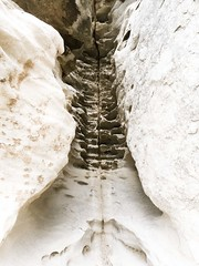 Spine (knipserkrause) Tags: calanques capcanaille fels formation anatomie