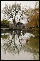 Écluse sur le Pont canal d' Agen. (murielle1957) Tags: écluse arbres reflets eau lotetgaronne agen pont canal
