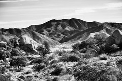 Desert View: Southeast Arizona (Robert_Brown [bracketed]) Tags: robertbrown thesilvercityphotographer gilagallery desert arizona az southwest restarea mountains hills rocks boulders highway freeway landscape blackandwhite bw canon 5d mark iv digital dslr