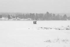 Green Lake, Dysart et al, Ontario, Canada (Tiphaine Rolland) Tags: ontario canada dysartetal haliburtoncounty haliburton haliburtonhighlands highlands algonquinhighlands algonquin winter hiver 2019 nikond3000 nikon d3000 snow neige white blanc lake lac lacgelé frozenlake frozen gelé eau water greenlake
