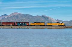 Oldies on the Lake (Wheelnrail) Tags: up pacific union local wendover leu50 lake west utah ut great salt locomotive emd sd402 sd60 sun mountains rural is best
