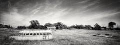 desolation boulevard... (BillsExplorations) Tags: schoolbus yellowbus car vintagecars abandoned forg blackandwhite old abandonedcar field nebraska dickens desolationboulevard