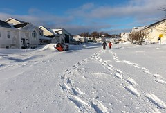 After the Blizzard (Karen_Chappell) Tags: snow winter blizzard nature nfld newfoundland stjohns city urban january people homes houses street storm landscape cityscape avalonpeninsula atlanticcanada eastcoast canonef24105mmf4lisusm