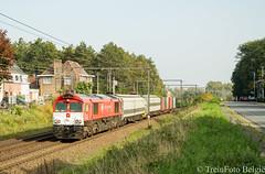 Crossrail DE6312 Wetteren (TreinFoto België) Tags: de6312 gm 66 77 crossrail benelux bls cargo wetteren lijn 50 53 railadventure 41594 aachenwest bruggebundels bombardier twindexx belgium belgien belgië belgique