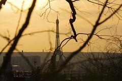 124 Paris Janvier 2020 - les toits de Paris depuis la Butte Montmartre, Tour Eiffel (paspog) Tags: paris france toits roofs dächer montmartre butte janvier januar january 2020 buttemontmartre toitsdeparis roofsofparis