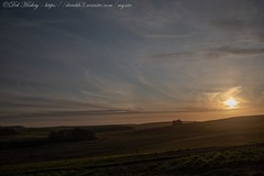 IMG_0515 (del.hickey) Tags: wiltshire landscape white horse