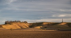 IMG_0503 (del.hickey) Tags: wiltshire landscape white horse