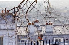 123 Paris Janvier 2020 - les toits de Paris depuis la Butte Montmartre (paspog) Tags: paris france toits roofs dächer montmartre butte janvier januar january 2020 buttemontmartre toitsdeparis roofsofparis
