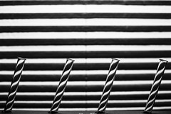 Light Patterns in Test Tubes (hs.Pictures) Tags: nopeople window closeup pattern testtube backlight blackandwhite bw lightpattern
