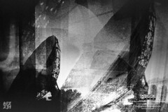 Connected (Kfz231) Tags: art blackandwhite bw orwo orwoun54 fanalog durango lagosdemoreno outside film filmphotography lomography lcw pentax pentaxmx 35mm filmswap street buyfilmnotmegapixels ishootfilm