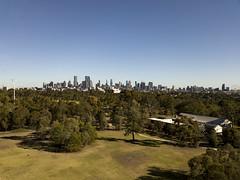 Melbourne beyond the park (Paul Threlfall) Tags: melbourne djimavicproplatinum drone aerial skyline city blue sky royalpark parkville victoria australia ferriswheel trees melbournestar