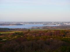 P1017221 Poole Harbour (Photos-Tony Wright) Tags: view poole harbour sea heath dorset uk january 2020