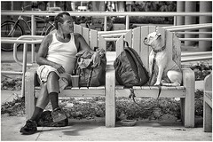 man vs dog in a staring contest (black & white version) (Bluescruiser1949) Tags: southbeach miami florida contest staring blackandwhitestreetportrait blackandwhiteversion blackwhitephotography bw beach dog man undershirt wanderingaboutphotography beachphotography bluescruiser1949