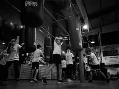 8017 - Boxing bag (Diego Rosato) Tags: bag sacco boxer pugile boxe boxing pugilato boxelatina allenamento training fuji x30 rawtherapee bianconero blackwhite