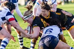 DSC_7978.jpg (davidhowlett) Tags: wasps london bristolbears waspsladies bristol tyrrellspremiership womensrugby rugby twyfordavenue ladiesrugby tyrrells rugbyunion