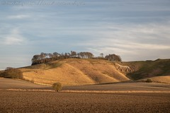 IMG_0493 (del.hickey) Tags: wiltshire landscape white horse