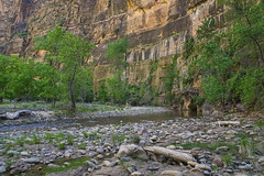Virgin River - 2018 (Bernie Emmons) Tags: zionnationalpark virginriver red redrock canyon river trees canyonwalls rocks
