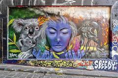 Koryu88 Hosier Lane 2020-01-18 (5D4_9529) (ajhaysom) Tags: koryu88 hosierlane melbourne canon1635 streetart graffiti canoneos5dmkiv australia