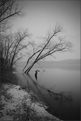 **WINTER MOMENTS** (Rich Zoeller Photography) Tags: richzoeller zoeller thatkidrich nyphotographer winter snow nature nationalgeographic tree lake reflections wandering ny longisland statepark branches explore frozen storm sony sonya7r3 bw blackandwhite