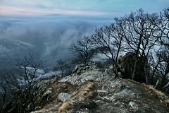 Mordor (HorvathZsolt73) Tags: pilis vadálló prédikálószék dömös hegy berg hill landscape cloud felhők pára köd foggy winter januar tree