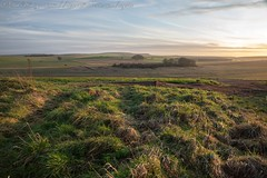 IMG_0526 (del.hickey) Tags: wiltshire landscape white horse