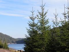 in Thüringer Wald (germancute ***) Tags: outdoor nature landscape landschaft thuringia thüringen wald